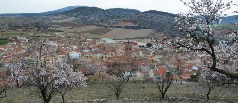 Almendros - Herrera de los Navarros