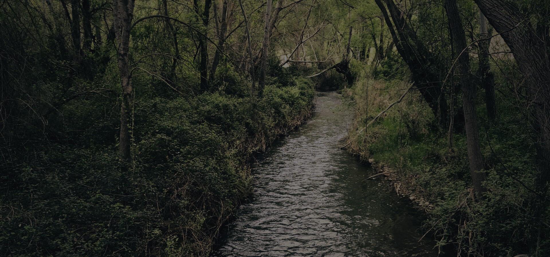 La Huerva - Herrera de los Navarros - Foto del Desafío Herrerino