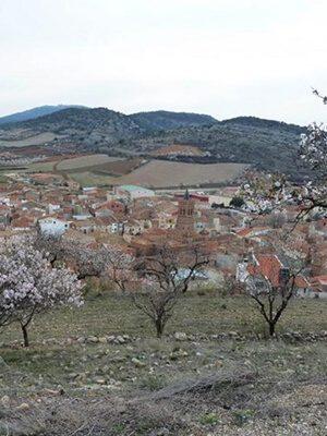 Feria de la Almendra y el Cordero - Herrera de los Navarros